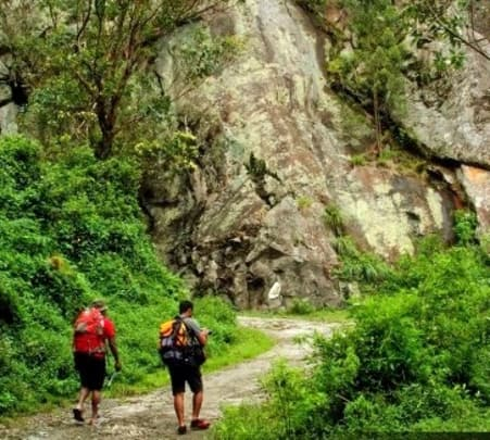 Trek through Misty Mountains in Haputale