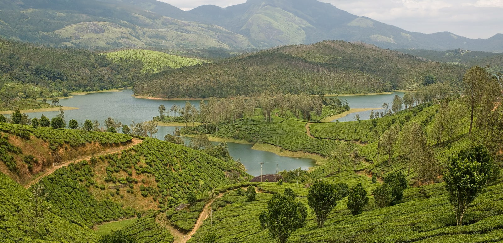 15 Best Places to Visit in Yelagiri - 2019 (Photos & Reviews)