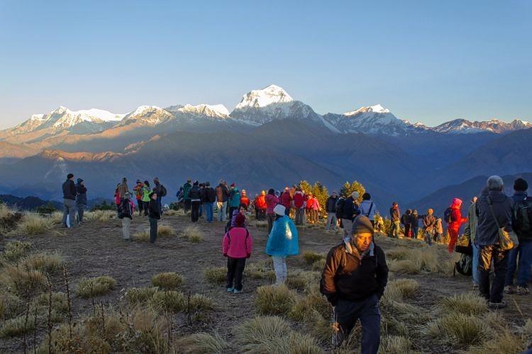 Ghorepani_poon_hill_trekking_in_nepal_(9).jpg
