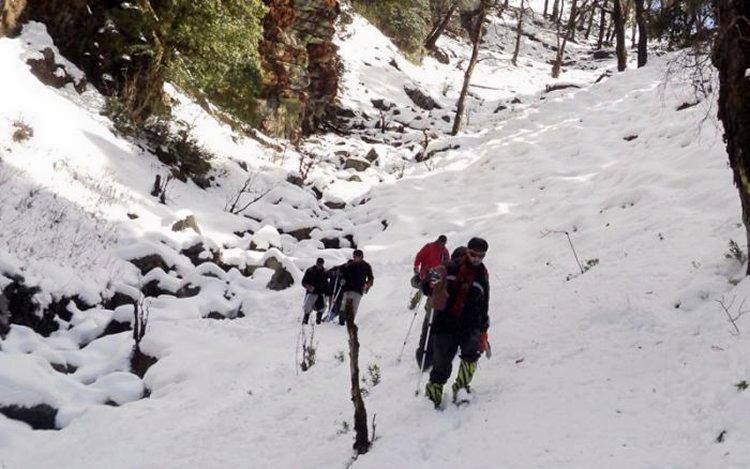M_snow_trek_to_chopta__deoriatal_and_chandrashila_peak__uttarakhand_05.jpg