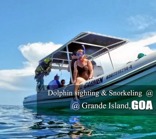 Dolphin Sighting and Snorkeling at Grande island in Goa