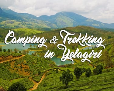 Camping in Yelagiri with Multi Adventure Activities - 17% Off