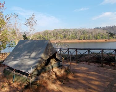 Jungle Camp in Periyar Wildlife Sanctuary