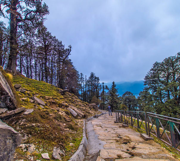 Deoria Tal and Chandrashila Trek 2018, Uttarakhand