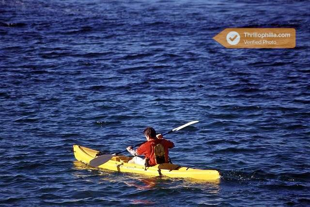 Kayaking_mumbai_(4).jpg