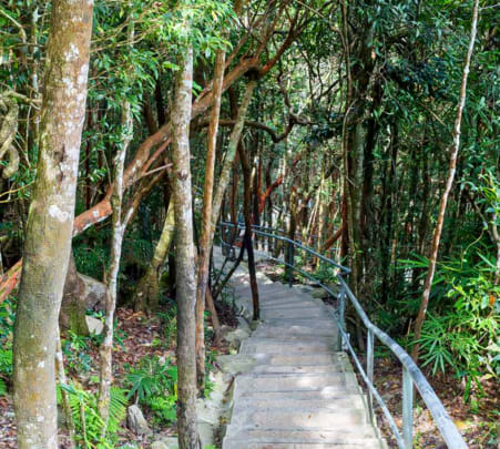 Langkawi Skytrail Guided Trek, Flat 15% off