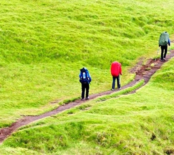 Hiking Day Trip to Nagarjuna