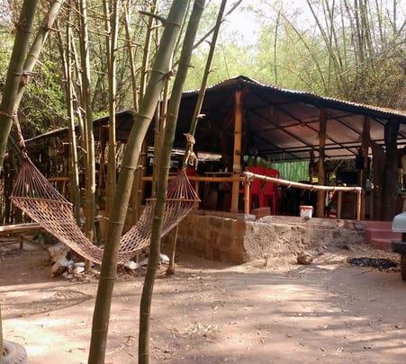 Adventure Jungle Camping in Mudumalai