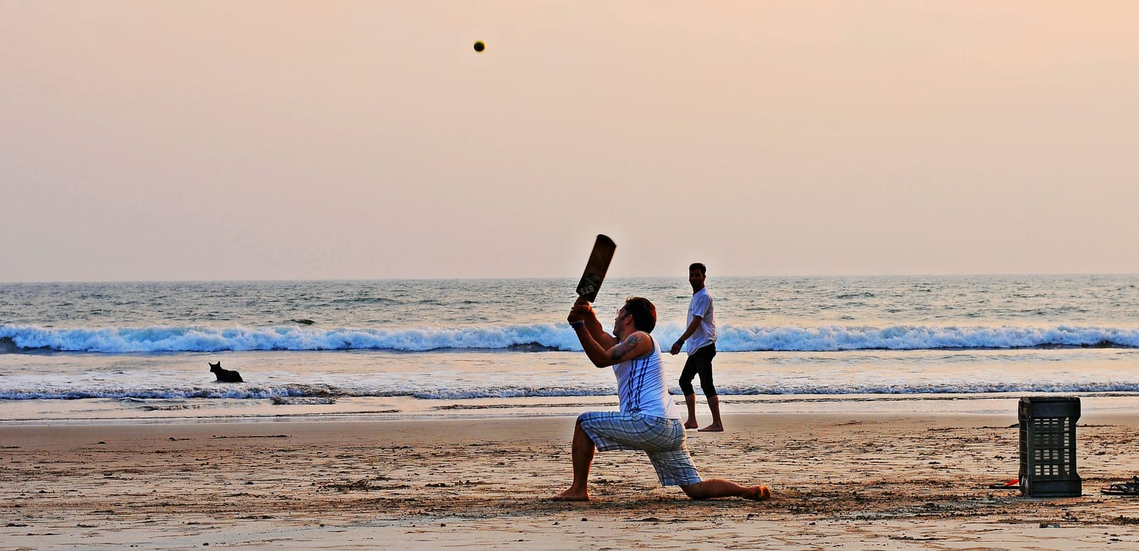 1492154007_beach_cricket_at_goa.jpg