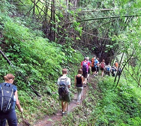 3 Hr Atv Riding and 3 Hr Trekking in Chiang Mai