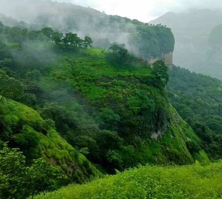 One Day Trek to Andharban, from Mumbai @ 1320 Only