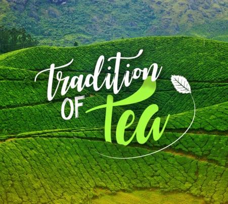 Kolukkumalai Tea Estate Trek