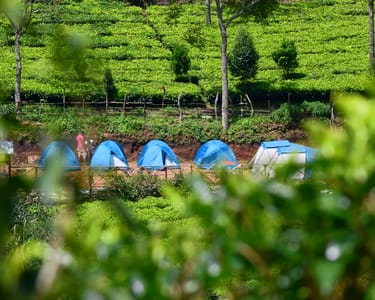Camping in Suryanelli, Munnar,flat 45% off