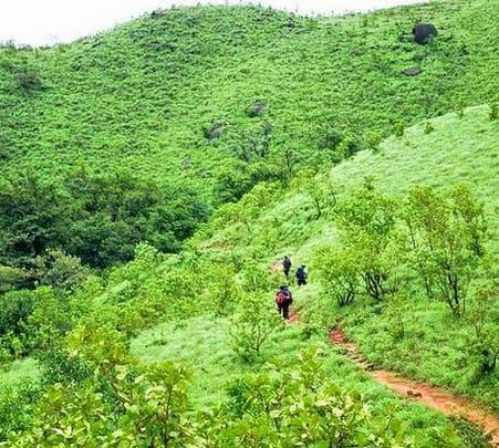 Hilltop Adventure Activities In Wayanad