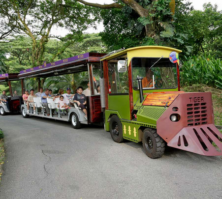 Jurong Bird Park Singapore Tickets - Flat 20% off