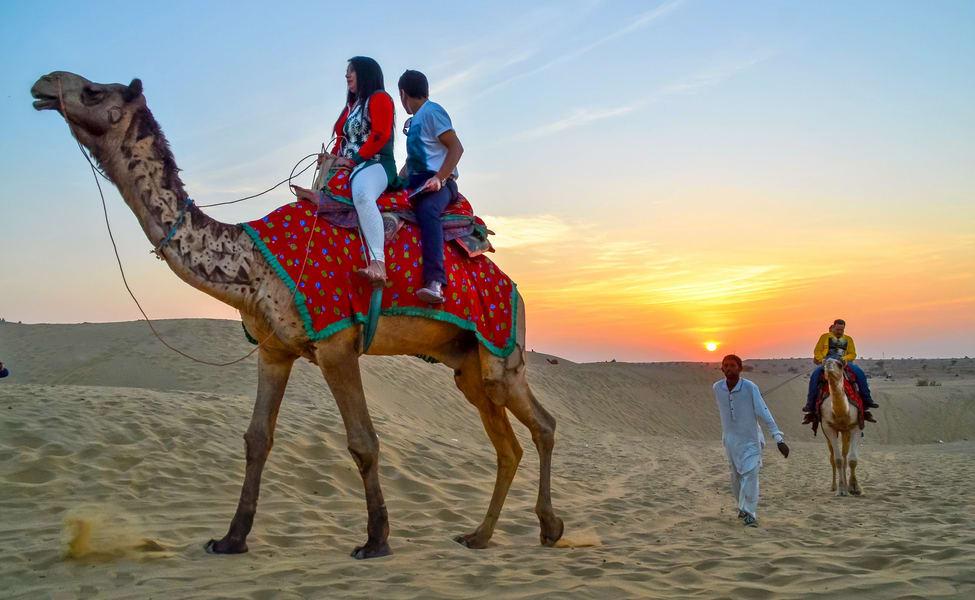 Image result for camel safari images hd images