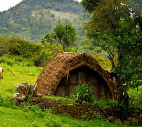 Valley View Camping, Trekking and Forrest Safari, Ooty