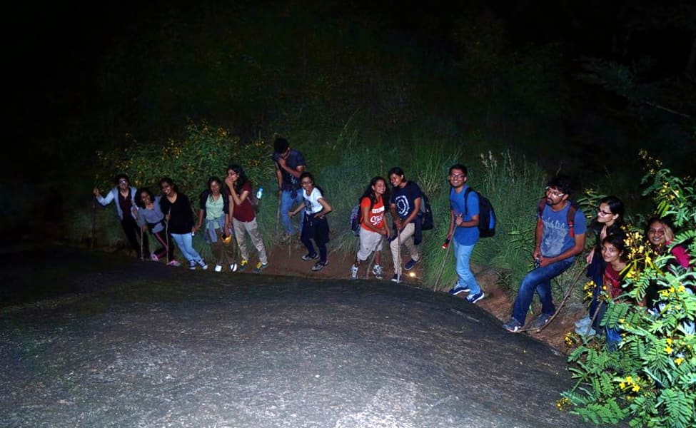 Night Out Trek In Manali With Camping