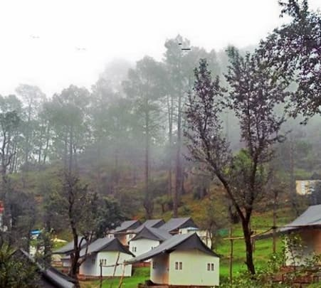 Corporate Team Outing at a Camp in Shimla