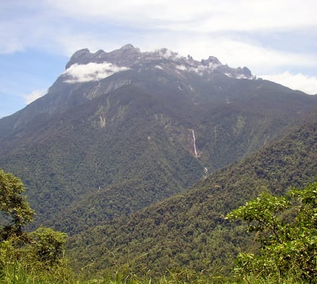 Kinabalu Park and Poring Hot Spring Tour