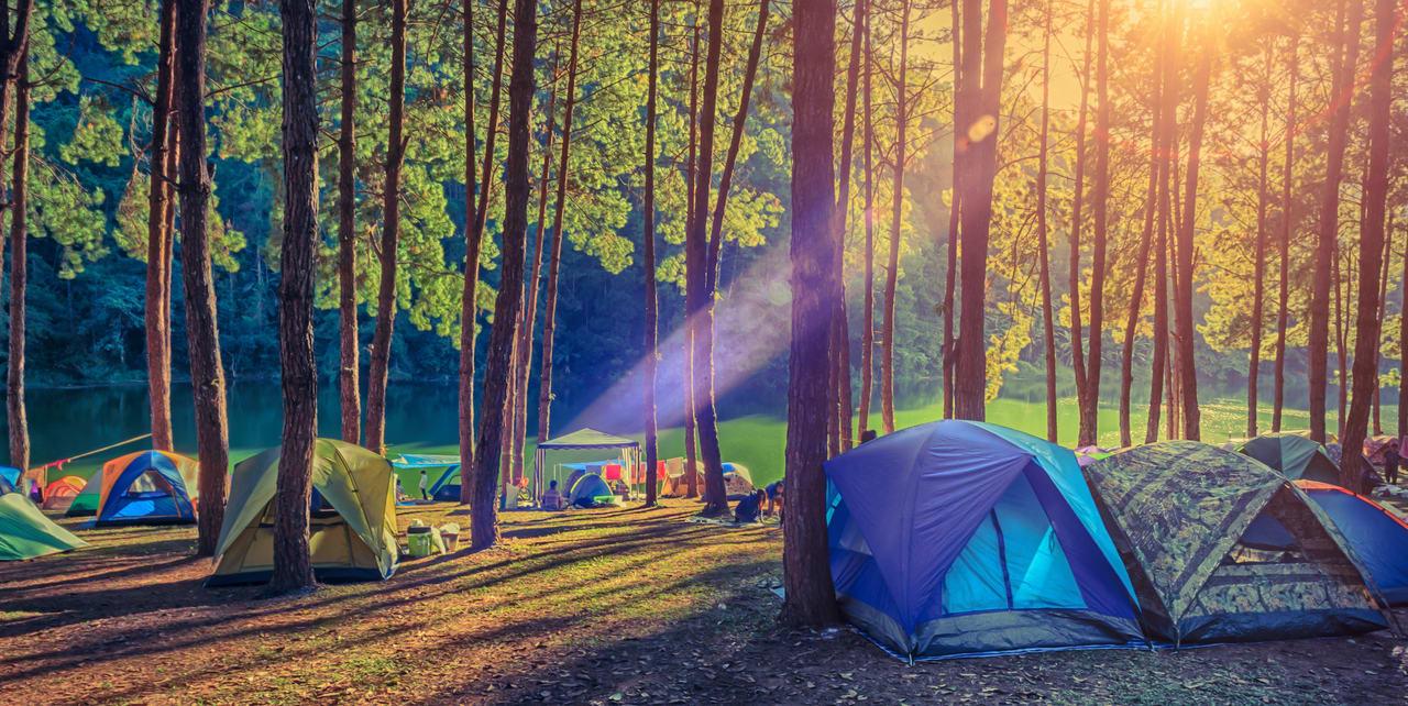 jungle camping in shivpuri