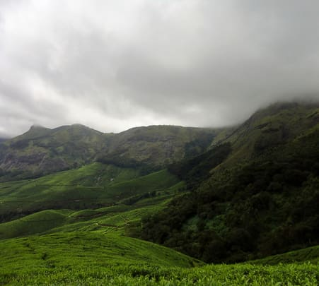 Dark Forest Tour in Munnar Flat 45% off