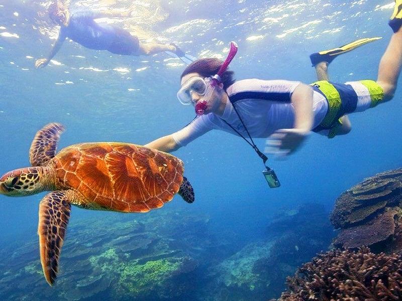 1488289024_171363765andaman_snorkeling_main.jpg