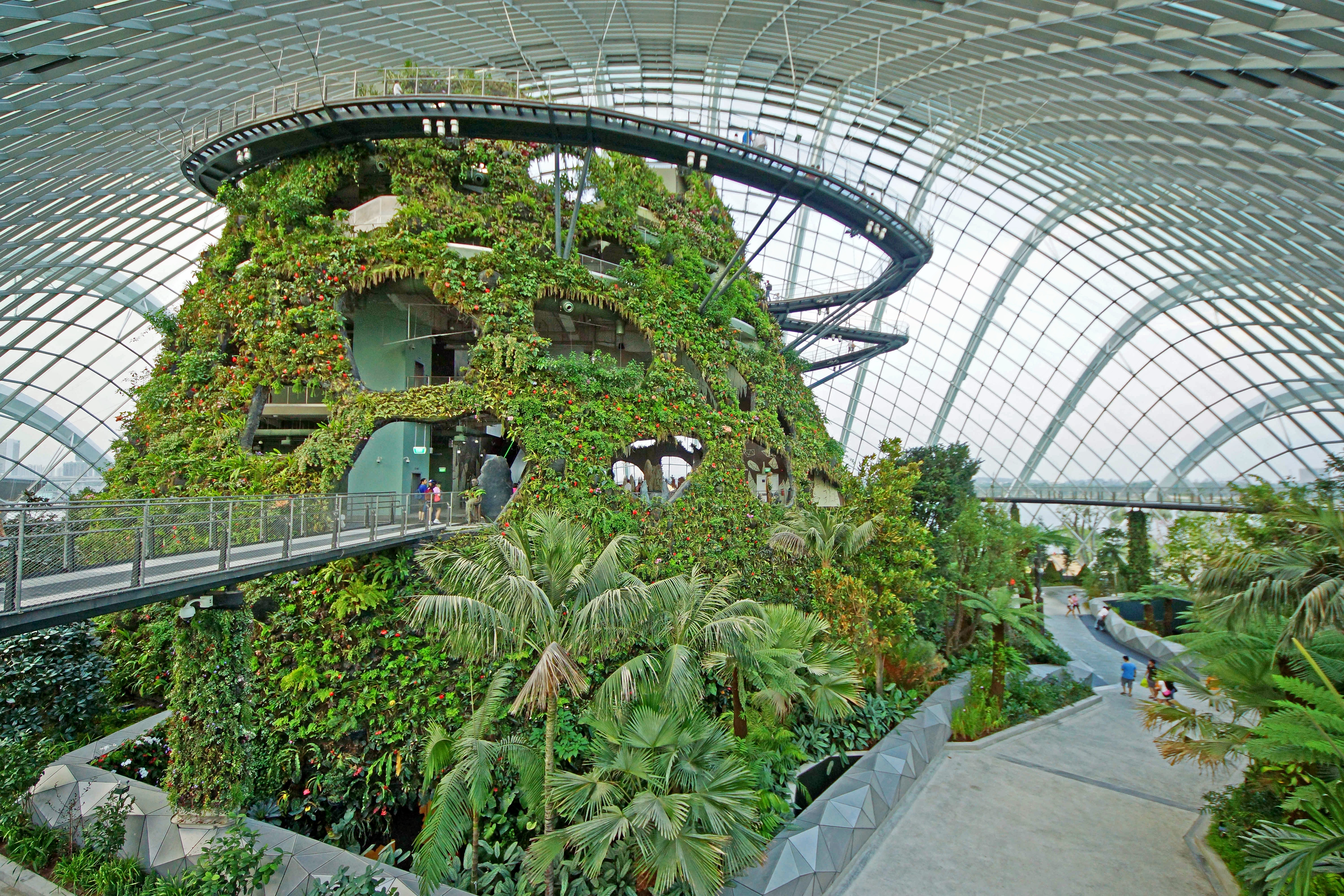 1465885864_cloud_forest__gardens_by_the_bay__singapore_-_20120617-05.jpg