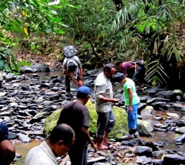 Trekking and Camping Experience, Sirsi