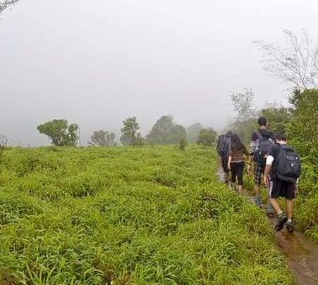 Trek to Tadiandamol, Coorg