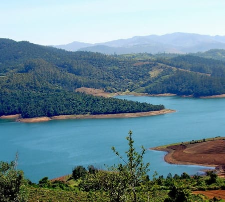 Rent a Local Expert in Ooty