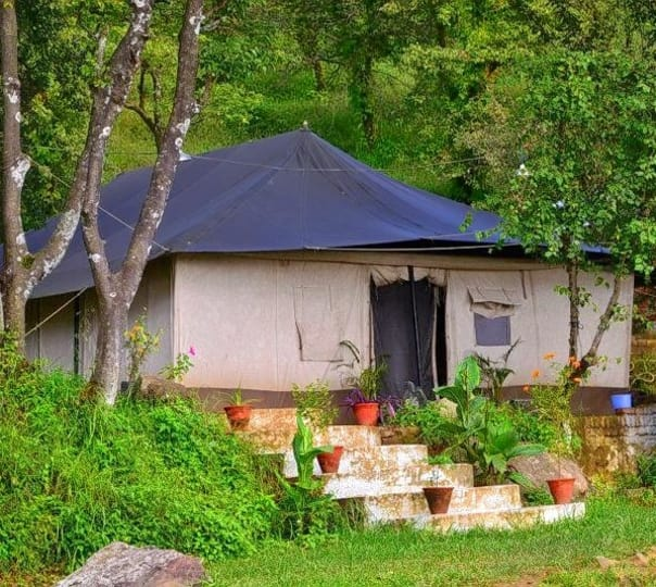 Camp Stay at Chrysalid Dharamshala