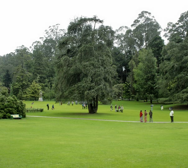 Rent a Licensed Guide in Ooty