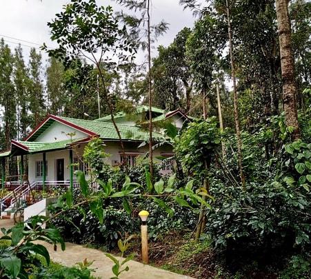 Stay Amidst Coffee Plantations, Chikmagaluru