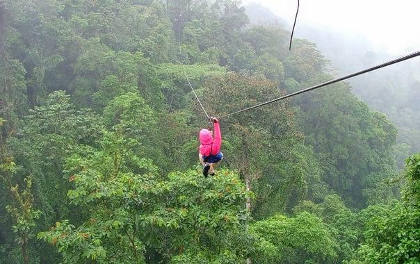 1462276601_zip-line_over_rainforest_canopy_4_january_2005__costa_rica.jpg