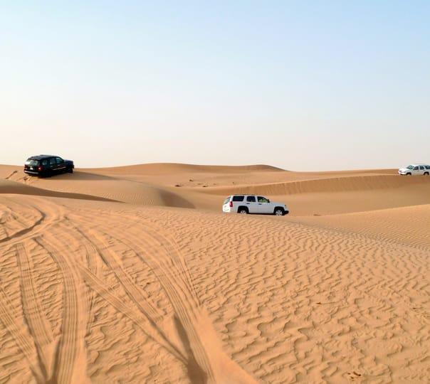Jeep Safari at Joggan