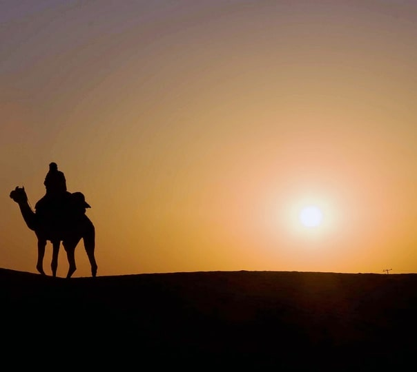 Thar Desert Drive And Overnight Stay, Jodhpur