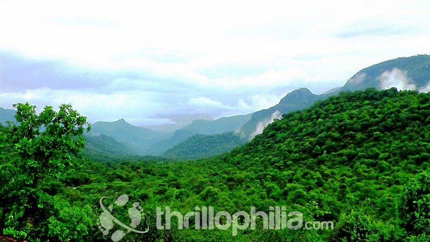 Chinnar-valley_kerala.jpg