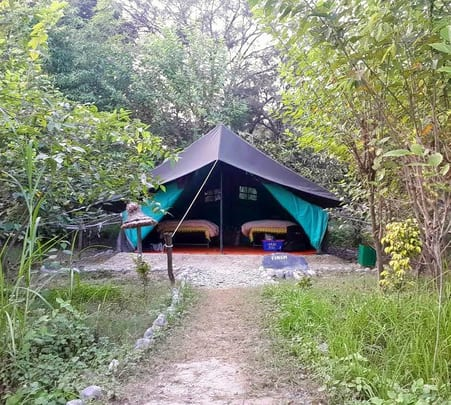 Jim Corbett Tour Package with Camping