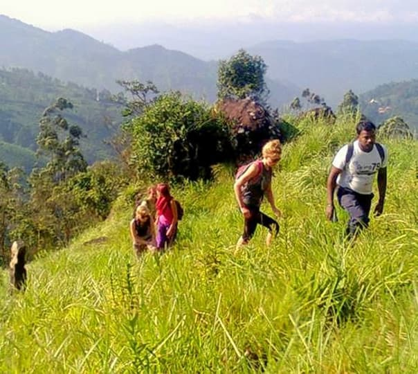 Trek To Seven Hills Mountain In Munnar