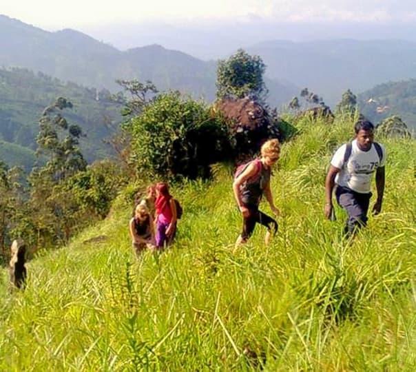 Trek To Seven Hills Mountain In Munnar