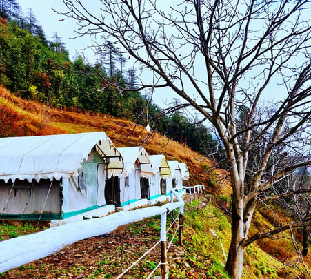 Camping with Activities in the Lap of Nature, Shimla