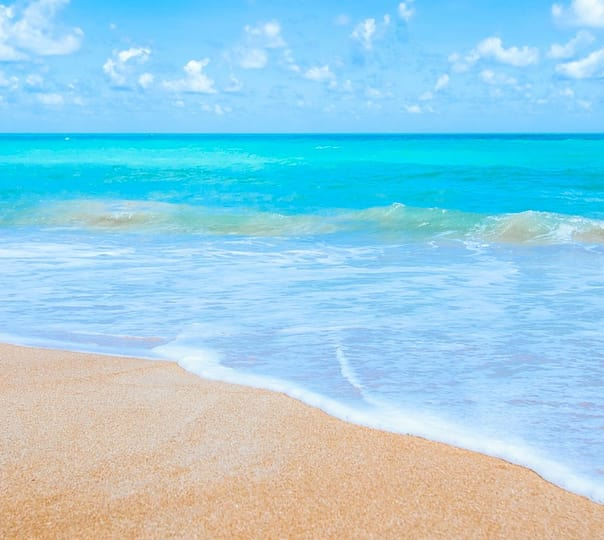 Romantic Andaman Honeymoon Tour Packages: a Voayge to Paradise