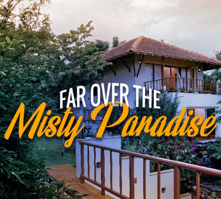 Estate Stay Experience In Chikmagalur