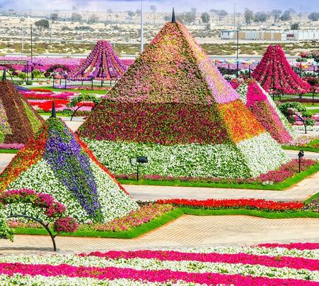 Trip to Dubai Miracle Garden