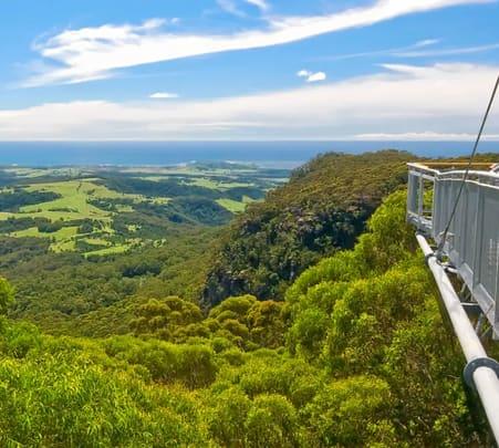 Illawarra Fly Treetops Walk Entry Ticket