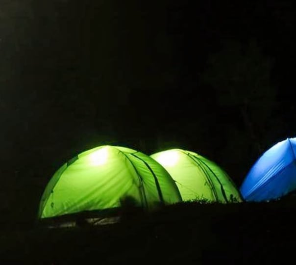 Night Camping With Campfire in Wayanad