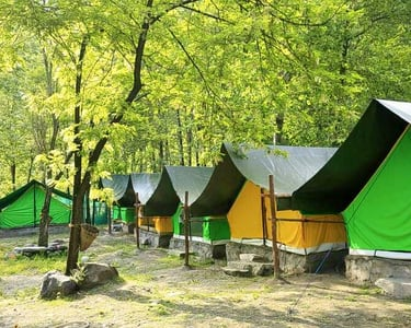 Adventure Camping with Bbq in Manali