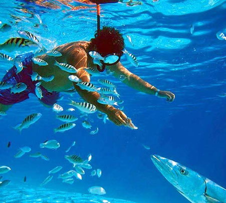 Snorkeling Along With Island Trip in Goa- Flat 17% Off