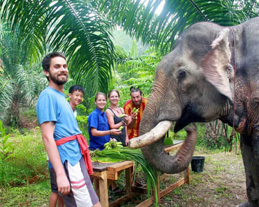 Khao Sok National Park Full-day Tour - Flat 27% off
